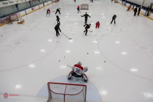 TendyFest On Ice